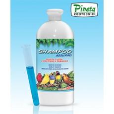Shampoo Azzurro