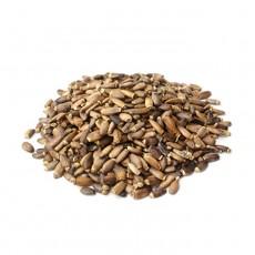 Seme Cardomariano