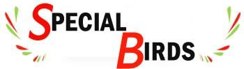 Special Birds di BUGLIANI ROBERTO| P.I: 01424480455